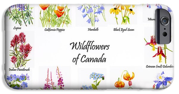 Blue Mountains Red iPhone Cases - Wildflowers of Canada Poster iPhone Case by Sharon Freeman
