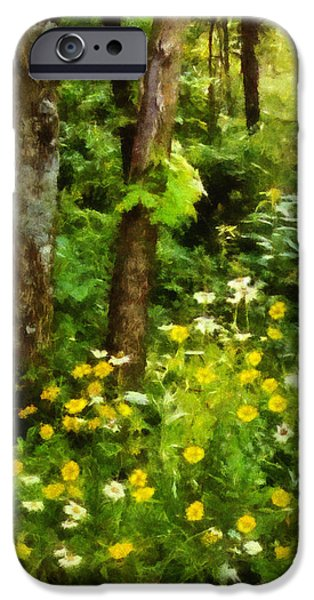 Arkansas iPhone Cases - Wildflowers Two iPhone Case by Ann Powell