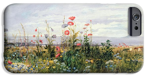 Watercolors Paintings iPhone Cases - Wildflowers with a View of Dublin Dunleary iPhone Case by A Nicholl