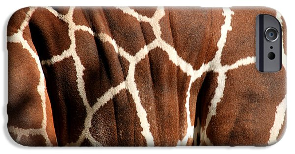 Giraffe Abstract iPhone Cases - Wildlife Patterns  iPhone Case by Aidan Moran