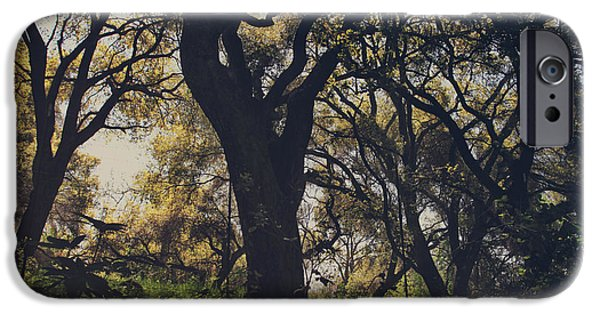 Oak Creek iPhone Cases - Wildly and Desperately My Arms Reached Out to You iPhone Case by Laurie Search