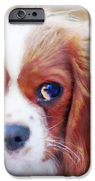 Will You Play With Me iPhone Case by Kay Pickens