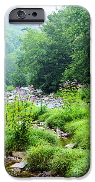 Trout Stream Landscape iPhone Cases - Williams River Late Summer iPhone Case by Thomas R Fletcher