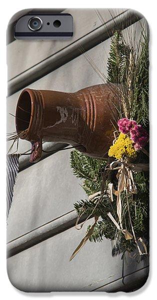 Williamsburg Bird Bottle 1 iPhone Case by Teresa Mucha
