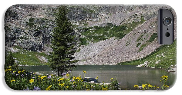 Recently Sold -  - Willow Lake iPhone Cases - Willow Lake iPhone Case by Michael J Bauer