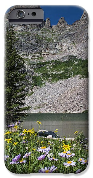 Willow Lake iPhone Case by Michael J Bauer