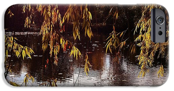 Willow Lake iPhone Cases - Willow pond iPhone Case by Andrew Amundsen