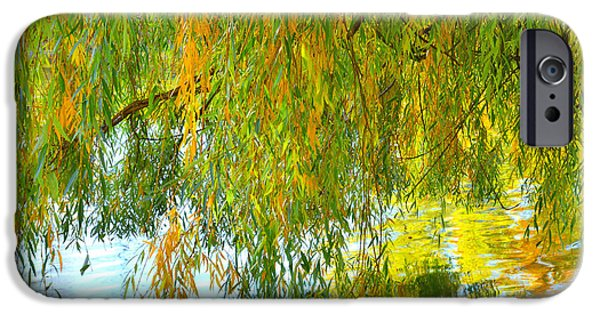 Willow Lake iPhone Cases - Willow iPhone Case by Tim Reaves