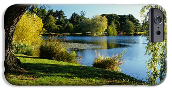 Willow Lake iPhone Cases - Willow Tree By A Lake, Green Lake iPhone Case by Panoramic Images