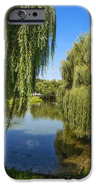 Willow Lake iPhone Cases - Willow Tree iPhone Case by Dobromir Dobrinov