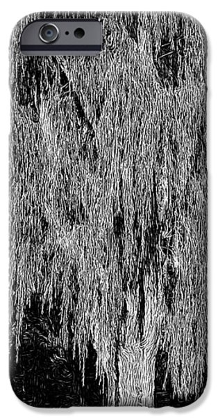 Lino Digital Art iPhone Cases - Willow Tree iPhone Case by Paul Gioacchini