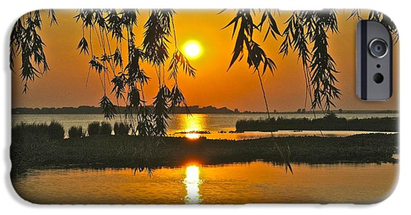 Willow Lake iPhone Cases - Willow Tree Sunset iPhone Case by Frozen in Time Fine Art Photography