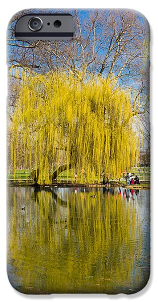 Reflecting Trees iPhone Cases - Willow tree water reflection iPhone Case by Matthias Hauser