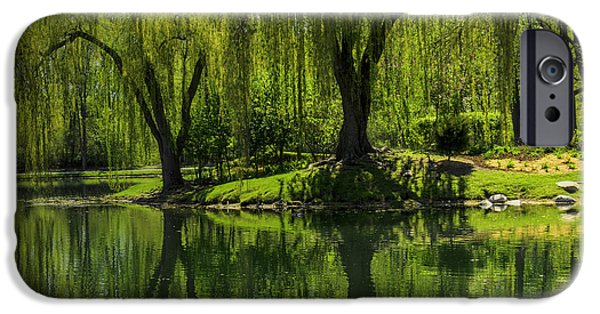Recently Sold -  - Willow Lake iPhone Cases - Willows weep into their reflection  iPhone Case by LeeAnn McLaneGoetz McLaneGoetzStudioLLCcom