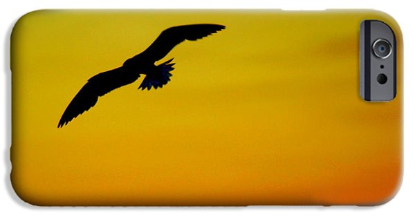 Flying Seagull iPhone Cases - Wind Beneath My Wings iPhone Case by Frozen in Time Fine Art Photography