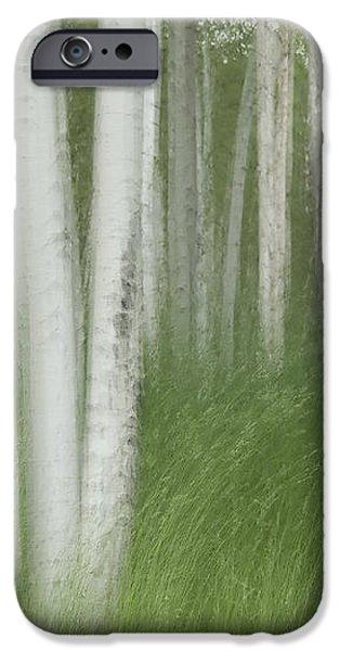 Wind in the Aspen iPhone Case by Nancy Myer