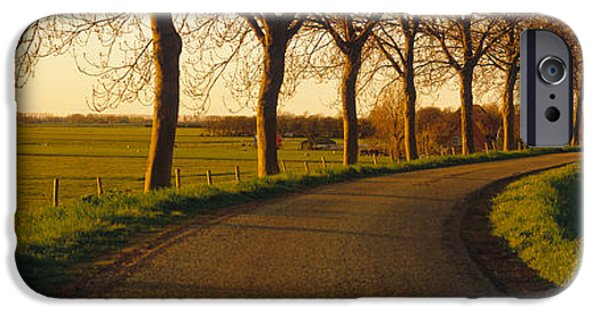 Pathway iPhone Cases - Winding Road, Trees, Oudendijk iPhone Case by Panoramic Images