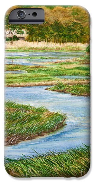 Michelle iPhone Cases - Winding Waters - Cape Salt Marsh iPhone Case by Michelle Wiarda