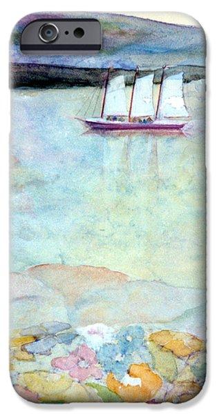 Windjammer iPhone Cases - Windjammer iPhone Case by Pamela Parsons