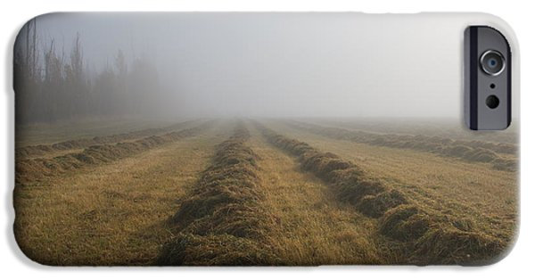 Fog Mist iPhone Cases - Windrows iPhone Case by Mike  Dawson