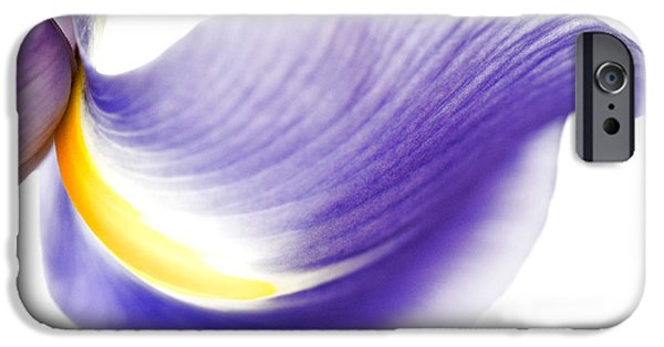 Meadow Photographs iPhone Cases - Windswept iPhone Case by Deb Halloran