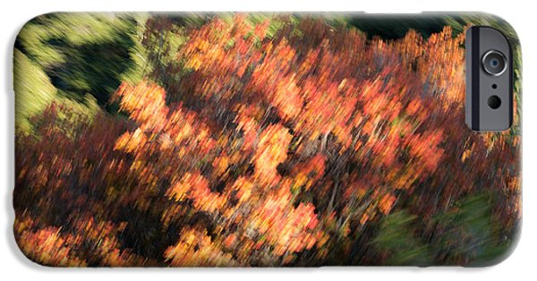 Painter Photo Photographs iPhone Cases - Windy Autumn paint iPhone Case by Southwindow Eugenia Rey-Guerra