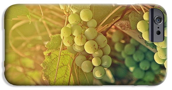 Berry iPhone Cases - Wine Grapes iPhone Case by Dan Radi