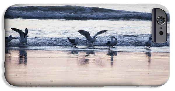 Flying Seagull iPhone Cases - Winging the Wave iPhone Case by Belinda Greb