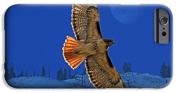 Red Tail Hawks iPhone Cases - Wings iPhone Case by Donna Kennedy