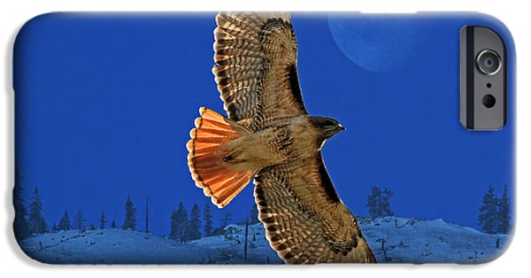 Animals Photographs iPhone Cases - Wings iPhone Case by Donna Kennedy