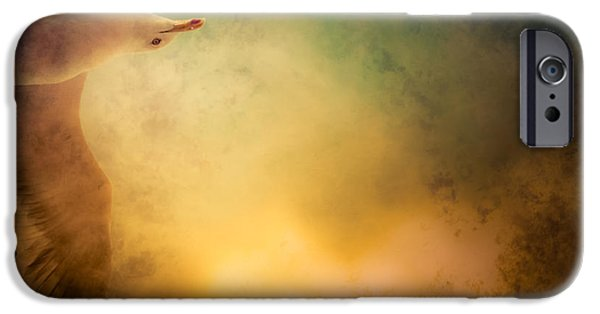 Freedom iPhone Cases - Wings of Freedom iPhone Case by Loriental Photography