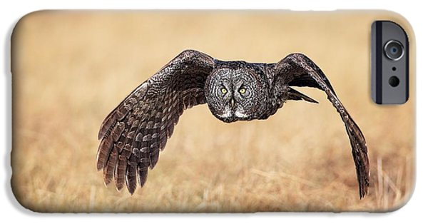 Flight Pyrography iPhone Cases - Wings of Motion iPhone Case by Daniel Behm