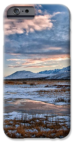 Winter Afternoon iPhone Case by Cat Connor