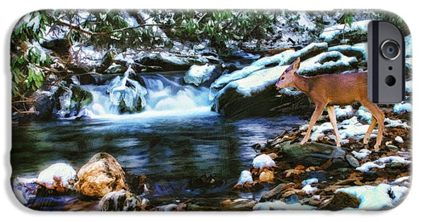 Snowy Brook iPhone Cases - Winter Along Rock Castle  iPhone Case by Darren Fisher