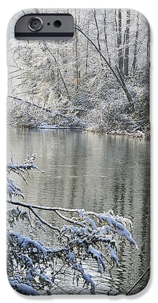 Winter along Williams River iPhone Case by Thomas R Fletcher