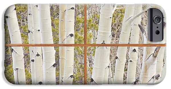 Tree Art Print iPhone Cases - Winter Aspen Tree Forest Barn Wood Picture Window Frame View iPhone Case by James BO  Insogna