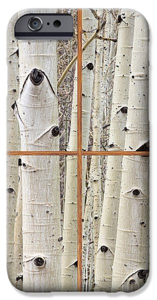 Tree Art Print iPhone Cases - Winter Aspen Tree View Through a Barn Wood Picture Window Frame iPhone Case by James BO  Insogna