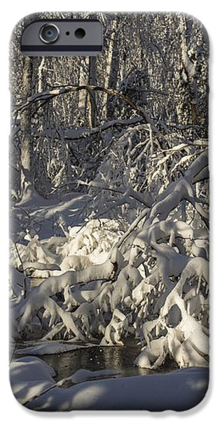 Winter at Borden Brook iPhone Case by Andrew Pacheco