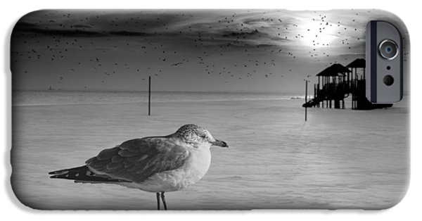 Beach iPhone Cases - Winter At Coney Island iPhone Case by Chris Lord