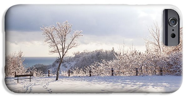 Park Scene iPhone Cases - Winter at Scarborough Bluffs iPhone Case by Elena Elisseeva