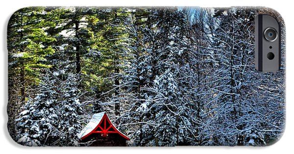 Recently Sold -  - Snowy iPhone Cases - Winter at the Red Boathouse iPhone Case by David Patterson
