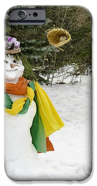 Winter Baseball ball gown  iPhone Case by LeeAnn McLaneGoetz McLaneGoetzStudioLLCcom