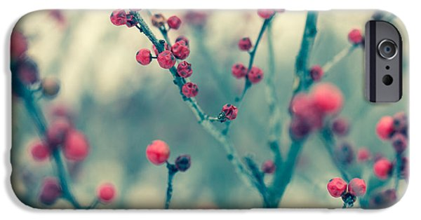 Winter iPhone Cases - Winter Berries iPhone Case by Shane Holsclaw