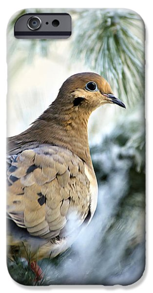 Rollo Digital Art iPhone Cases - Winter Bird Mourning Dove iPhone Case by Christina Rollo