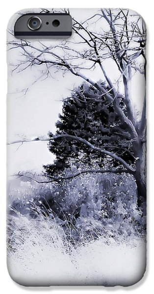 Snow Scene Digital iPhone Cases - Winter Blue  iPhone Case by Julie Palencia