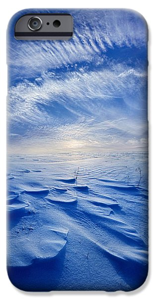 Angel Blues iPhone Cases - Winter Born iPhone Case by Phil Koch
