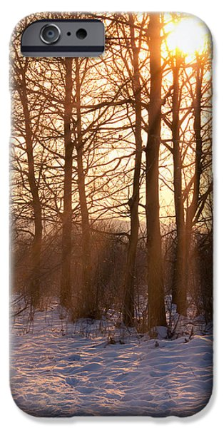 Winter Break iPhone Case by Wim Lanclus