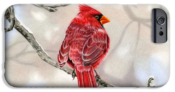 Snowy Drawings iPhone Cases - Winter Cardinal iPhone Case by Sarah Batalka