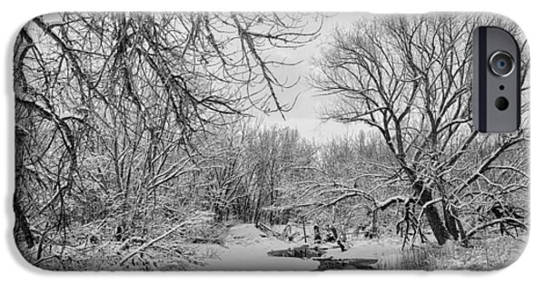 Snowy Brook iPhone Cases - Winter Creek in Black and White iPhone Case by James BO  Insogna
