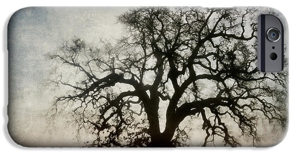 Strength Photographs iPhone Cases - Winter Dawn Tree Silhouette iPhone Case by Carol Leigh